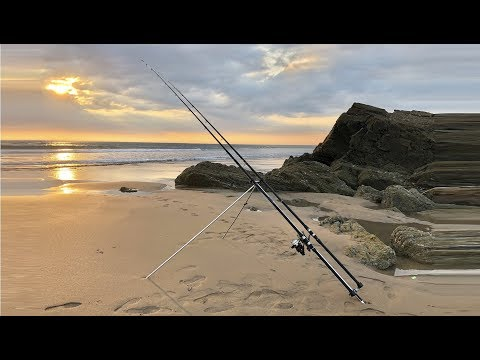 Shore Fishing UK - Beach Fishing Cornwall - Smooth Hounds, Rays And A Few More!