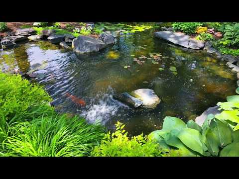 Kolam TERINDAH di dunia
