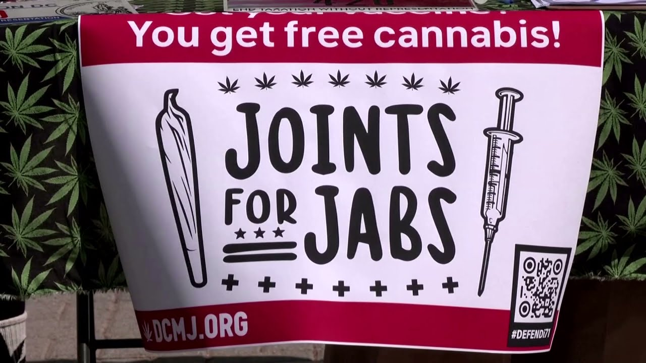 Activists stage 'Joints for Jabs' campaign in DC - YouTube