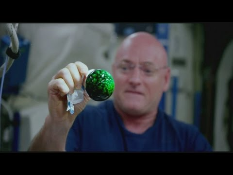 Amazing NASA science experiment filmed in space