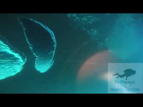 YUANING SEA - UNDERWATER INSPECTION