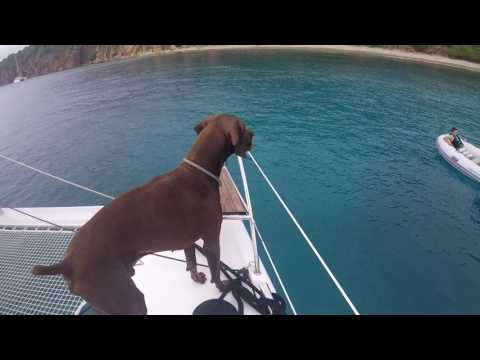Sailing Allende in USVI and BVI