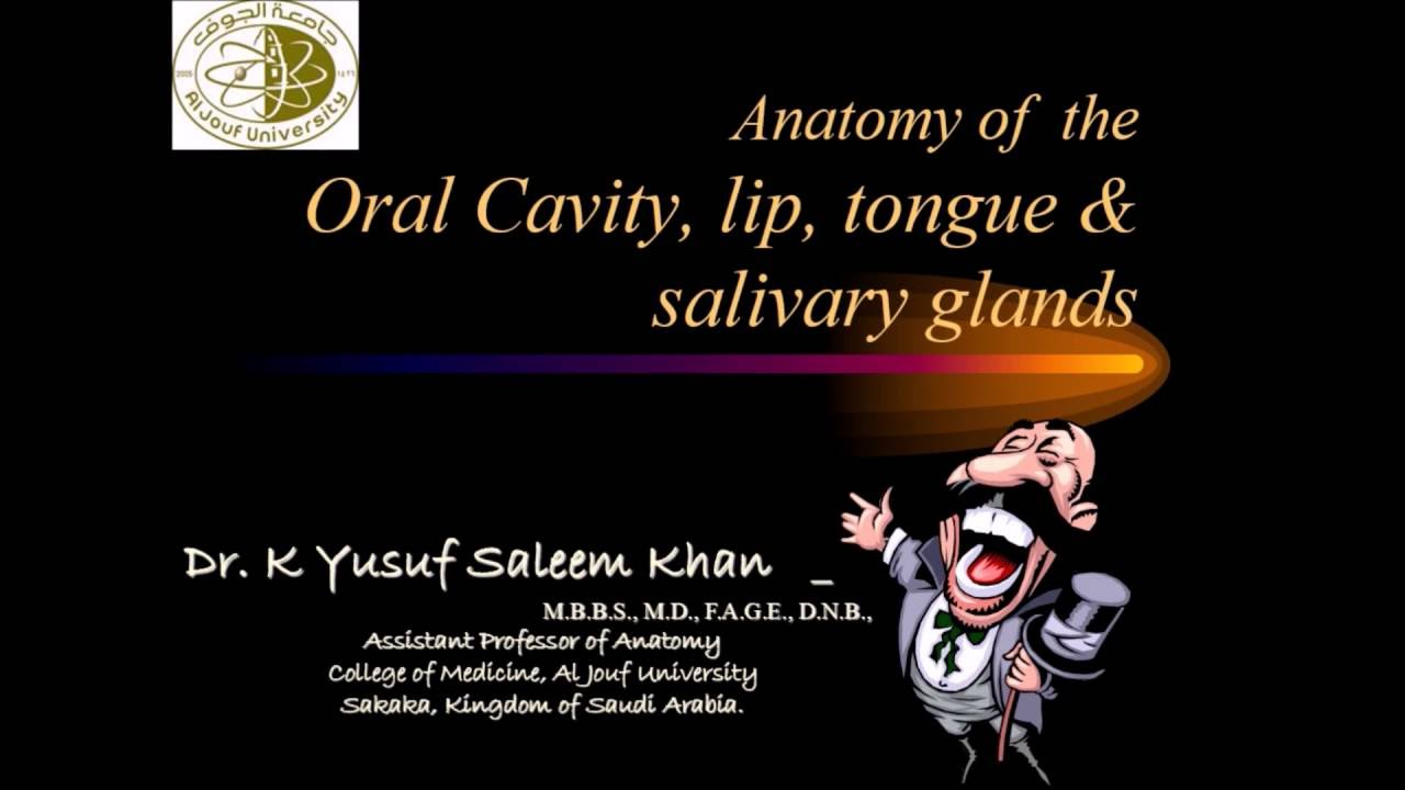 Anatomy Lecture On Oral Cavity Salivary Glands Complete