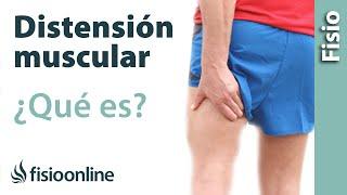 En la pierna posterior la muscular dolor inferior de parte
