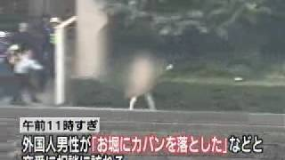 Tokyo Imperial Palace Skinny Dipper