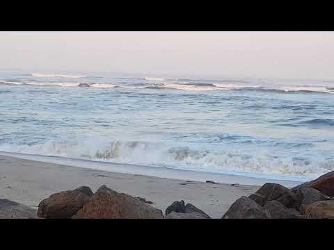 Swakopmund Beach -Namibia 2017 - Der Einsame Hirte By Leo Rojas