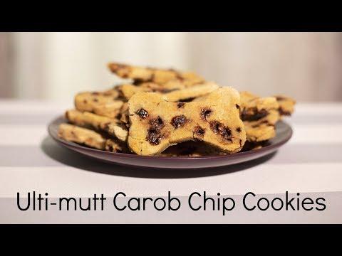 Carob Chip Cookies | Dog Treat Recipe