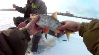 Рыбалка по первому льду на Иваньковском водохранилище