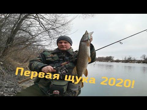 Первая щука на спиннинг 2020!
