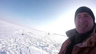 Казахстан Жезказган Выехали на Кенгирское водохранилище за чебаками