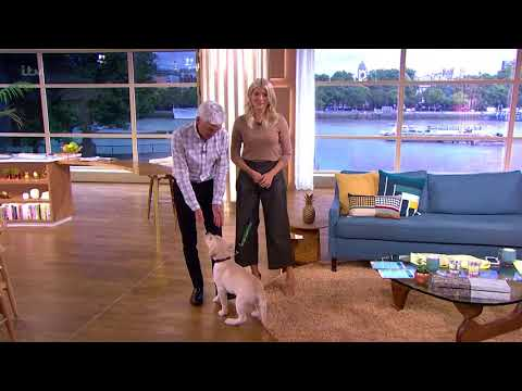 Digby Is Already Learning to Sit | This Morning