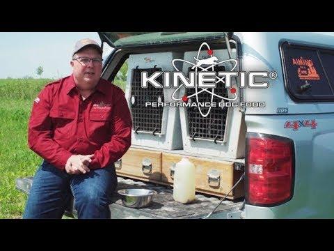 Steve Ries - Why Kinetic Works Best for My German Shorthairs