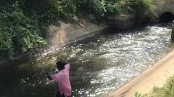 Sri lanka net fishing
