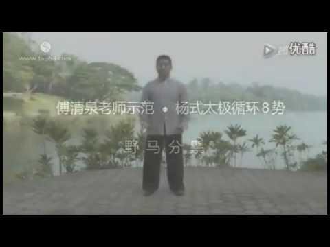 Yang shì Taiji Xunhuan 8 shi Fu Qingquan (杨氏太极循环8势 付清泉)