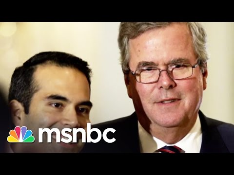 Will Jeb Bush Run For President? | msnbc