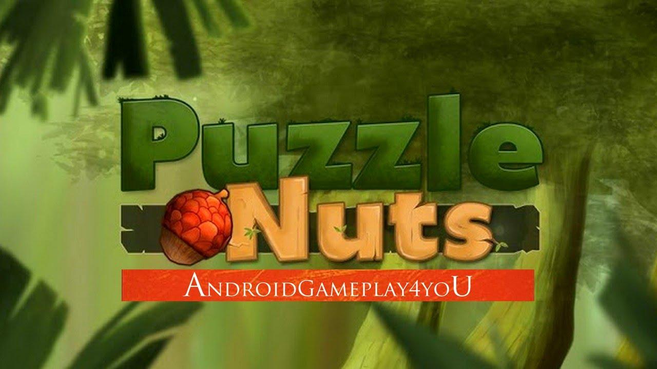 puzzle nuts