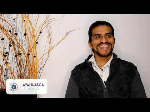 Ayahuasca y Metamedicina:
