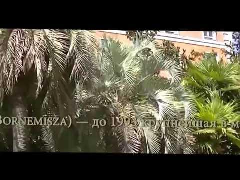 #Video de#vacaciones en#Museo#Thyssen#Bornemisza #Video#Travel to#Museo#Thyssen#Bornemisza)