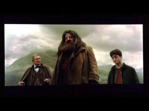 Harry Potter and the HalfBlood Prince Harry Potter on felix felicis