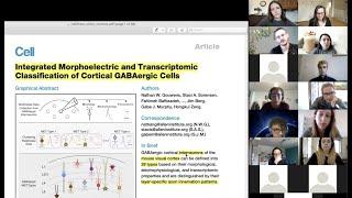 Neuroccino 30th November 2020 - myelination, social isolation, and GABA