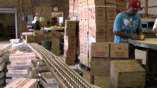 Katona Farms, Inc. - Grading Tomatoes