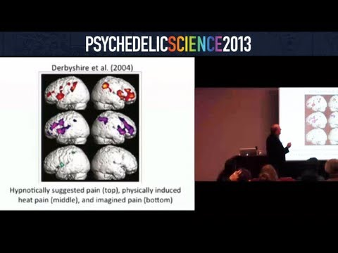 Neural Correlates of Altered Consciousness: Hypnosis, Meditation, & Drug-Based Changes - Amir Raz