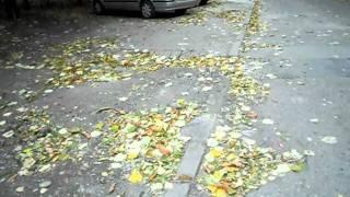 Половинчат ремонт на междублоково пр-во. част 1(, 2011-11-22T18:31:53.000Z)