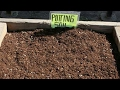 How to make your own 100 organic potting soil mix mp3