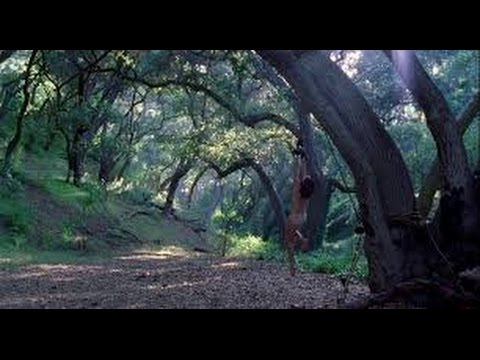 shallow ground (2004) with Stan Kirsch, Lindsey Stoddart, Timothy V. Murphy movie
