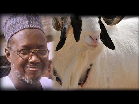 Download Tambayoyi   Yadda Ake Yanka Dabbar Zanen Suna Mace ko Namiji A Musulunci Sheikh Jafar Adam Kano