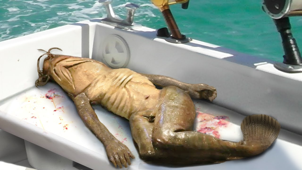 Download Real Or Fake? 10 Most Terrifying Recent Discoveries!