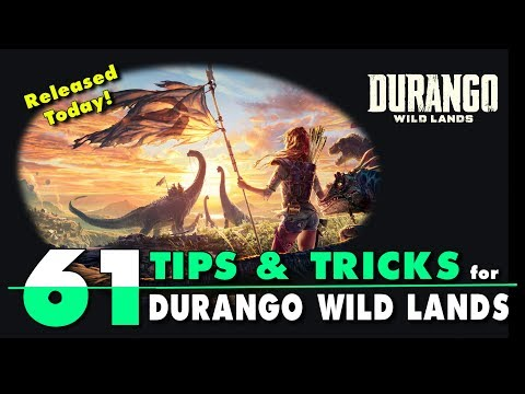 61 Tips and Tricks for Durango: Wild Lands. English Beginner's Guide