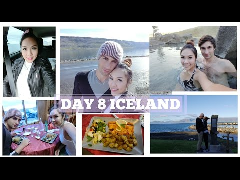 DAY 8 ICELAND: Wild Fox Bit Me!!! | Angelbirdbb
