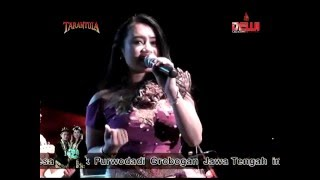 Download lagu New Tarantula Trend Music Malu Fitri Kecil MP3