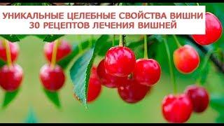 Уникальные целебные свойства вишни 30 рецептов лечения вишней
