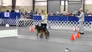 Akc Rally Obedience Nationals Round 2 Advance German Shepherd Dog
