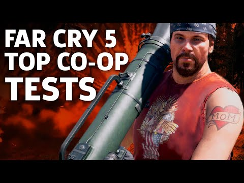 What Can You Do In Far Cry 5's Co-Op Multiplayer?