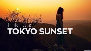 Gambar cover Erik Lund - Tokyo Sunset