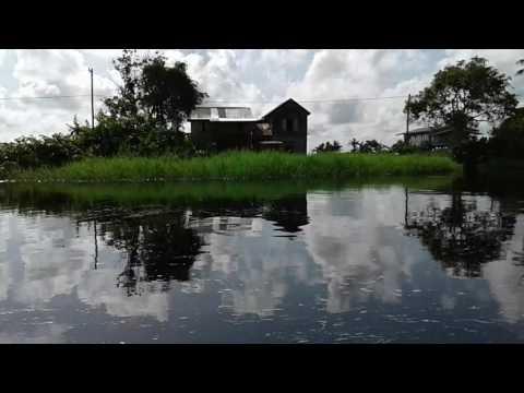 Guyana Boat Trip up Mahaicony Creek