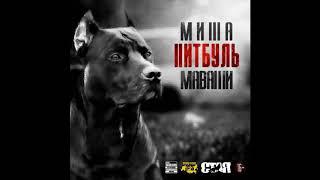 Download Миша Маваши - Питбуль | Весь Альбом Mp3 and Videos