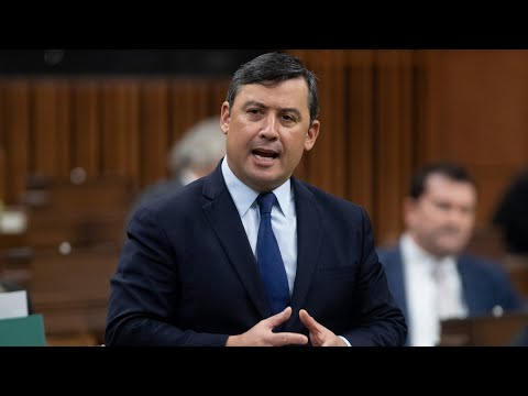 'Conservatives fell for Liberal traps': MP Michael Chong