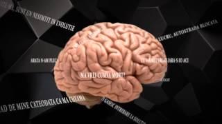 Codrin - Forme (Official Lyric Video)