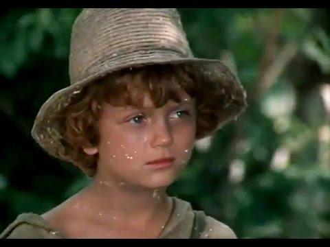 Приключения Тома Сойера и Гекльберри Финна 1 серия (1981)