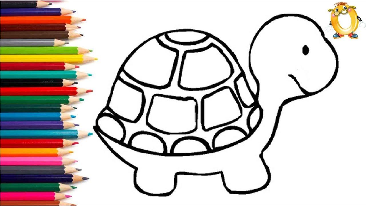 Раскраска для детей ЧЕРЕПАХА. Мультик - Раскраска. Учим ...