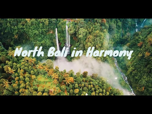 North Bali in Harmony | 4K UHD Drone Video | DJI Mavic Pro