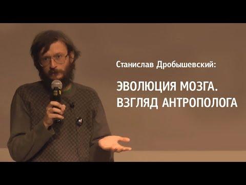 Станислав Дробышевский: Эволюция мозга. Взгляд антрополога