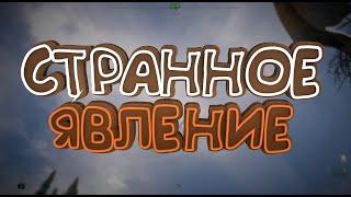 Онлайн игры 15   Странное явление Far Cry 5The ForestHitman