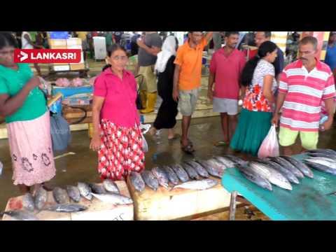 Central Fish Market Complex In Peliyagoda