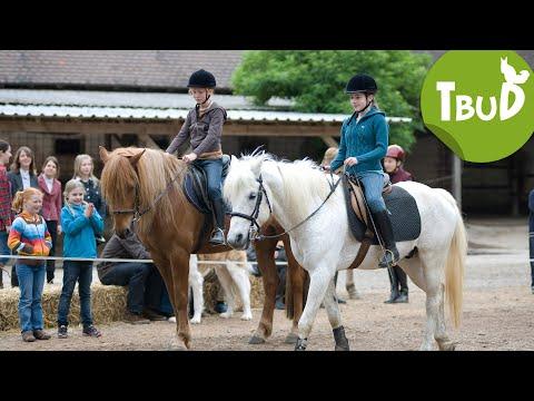 Reiterfreuden (Folge 16) | Tiere bis unters Dach | SWR Kindernetz