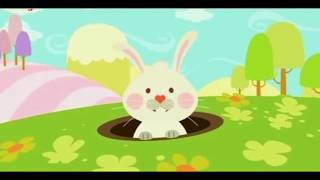 CARTOONS For KIDS   Little Lola BABY TV 11
